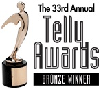 telly site  bronze award