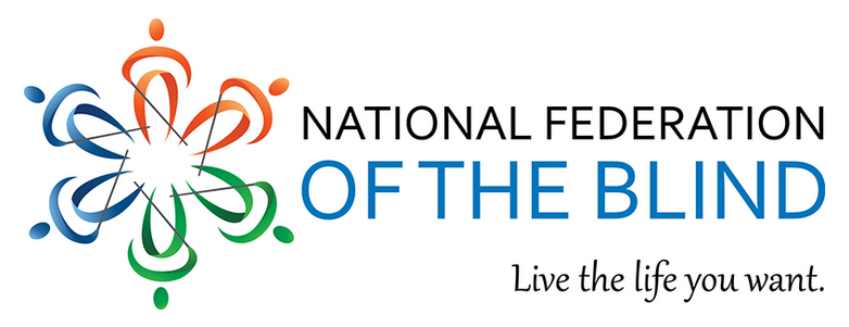 National Federation of the Blind Georgia logo